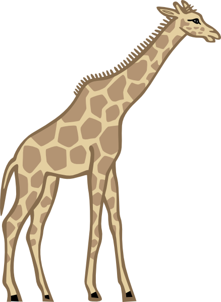 Tall clipart tall height. Free cliparts download clip