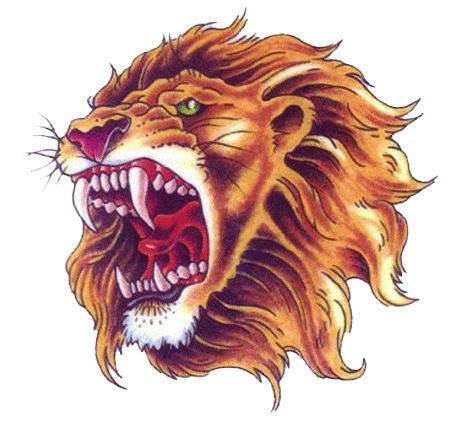 Lion head png. Tattoo transparent free images