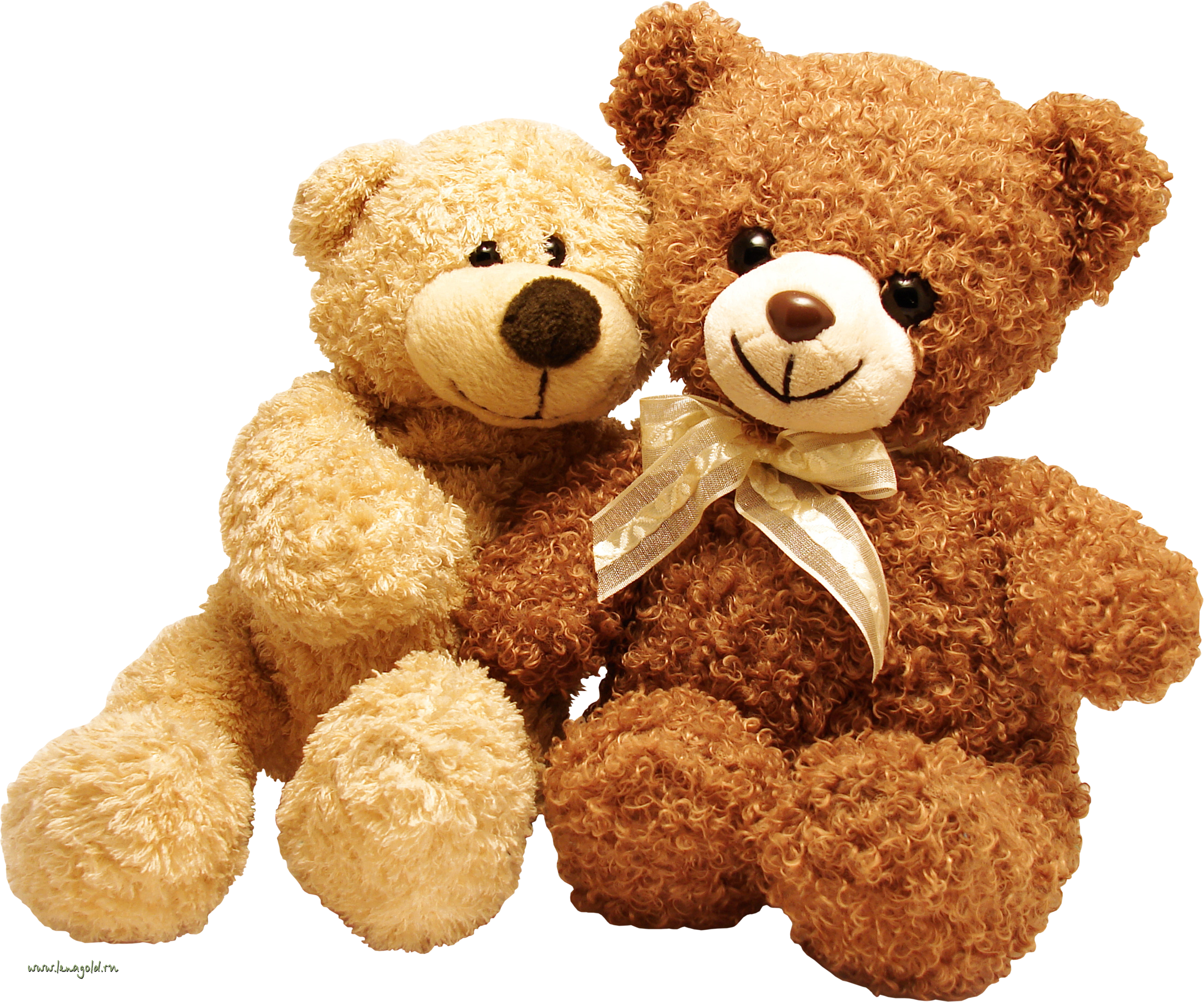 Teddy bear png. Transparent free images only