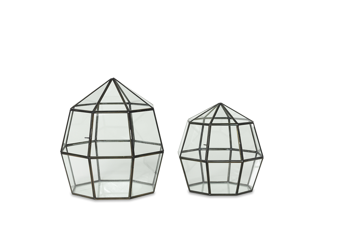 Thika emily may interiors. Terrarium drawing small picture stock