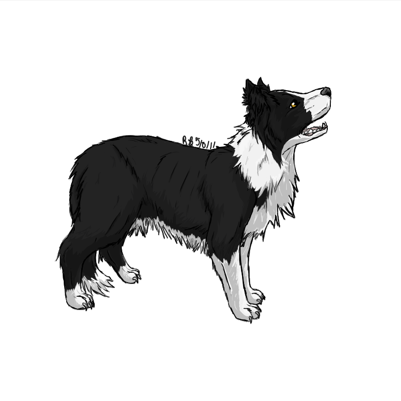 terrier drawing anime