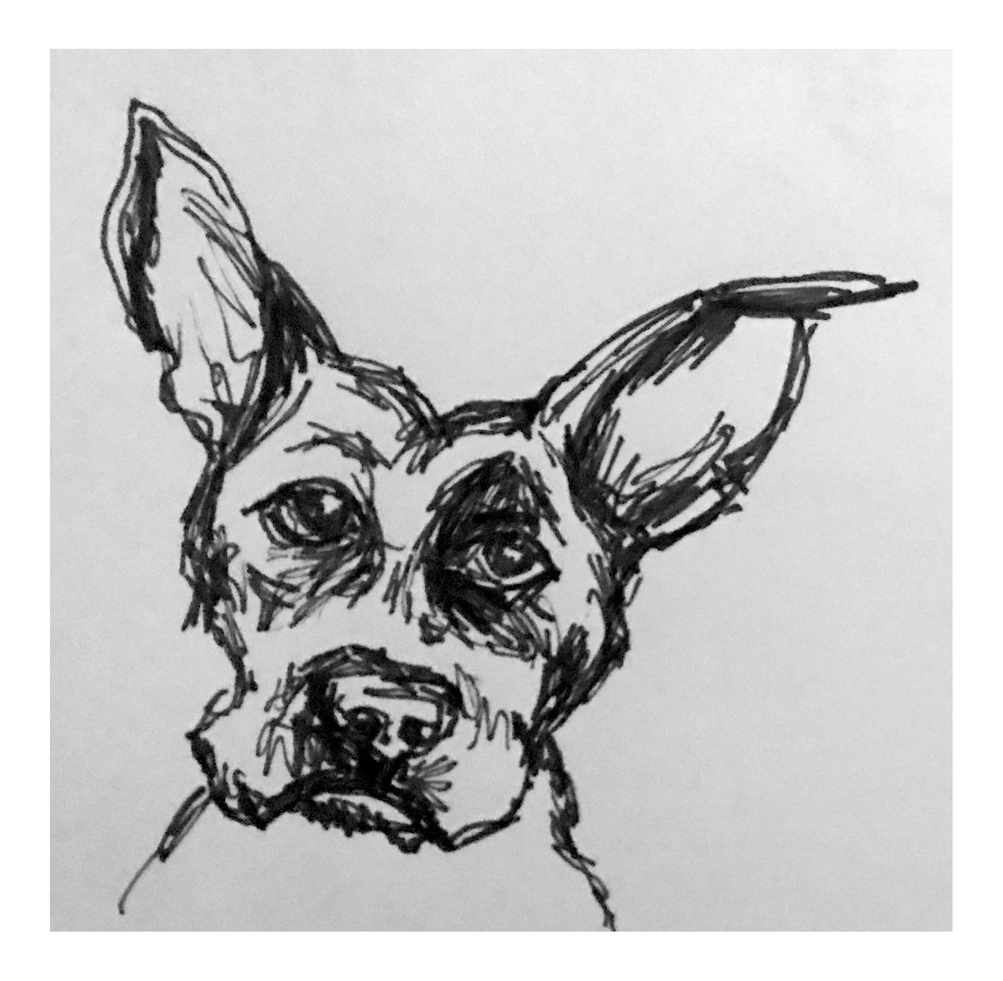 Terrier drawing ink. Curious max pen chairish