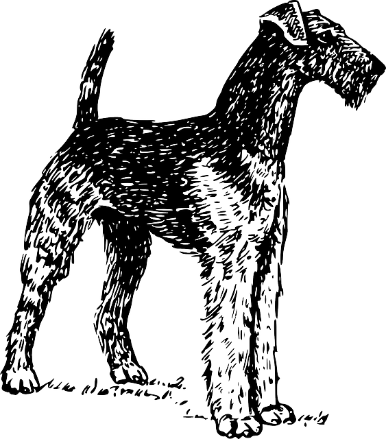 Terrier drawing ink. Free image on pixabay