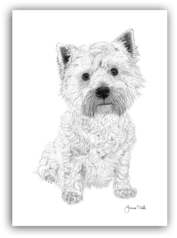 Terrier drawing pencil. Large wildlife cards dogs