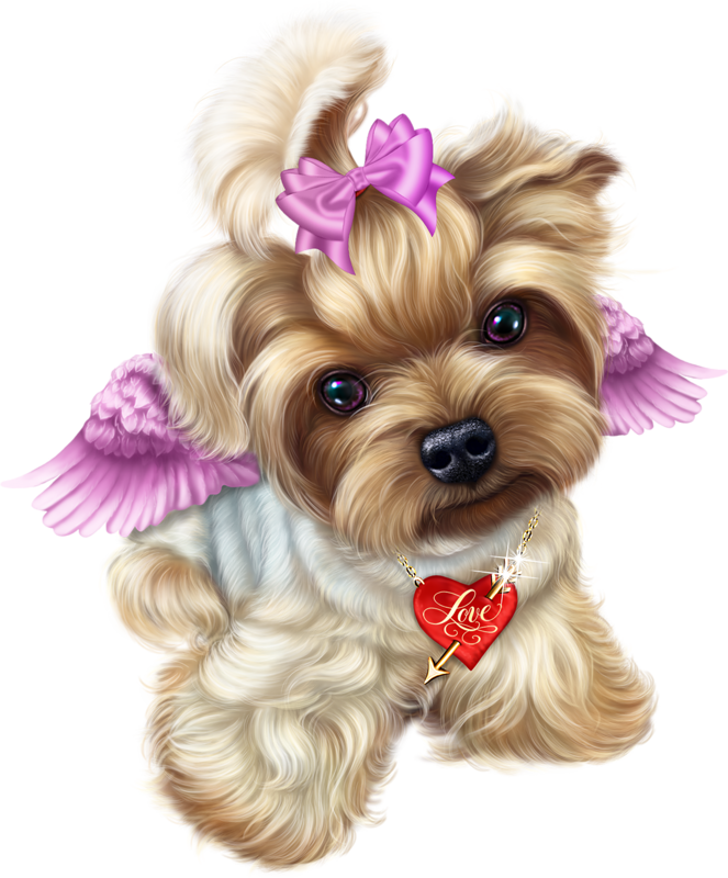 Terrier drawing teacup yorkie. Angel valentine liveinternet animal