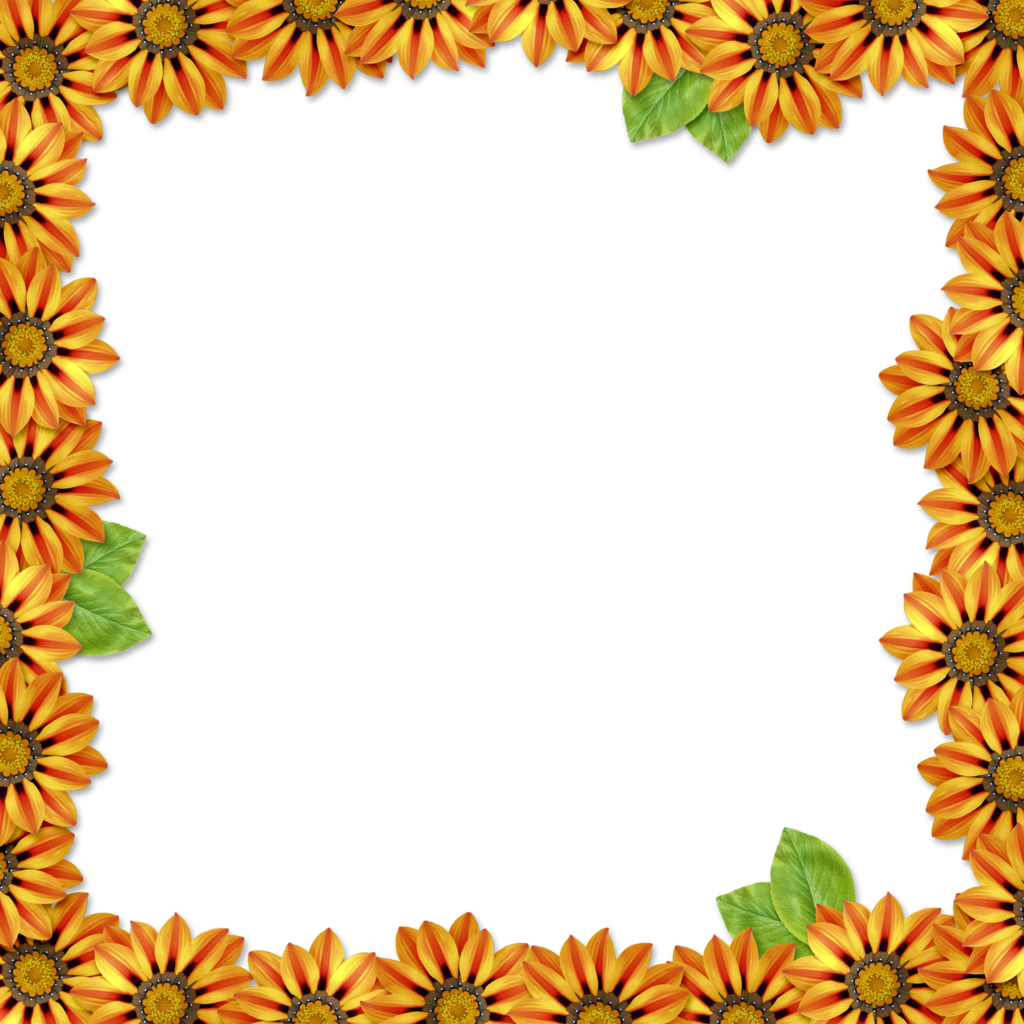 Thanksgiving borders png. Flower frame overlay by