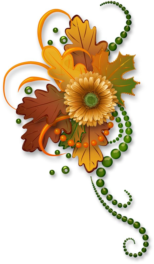 Thanksgiving clipart floral. Best flowers images