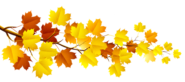 Thanksgiving leaves border png. Branch with autumn clipart