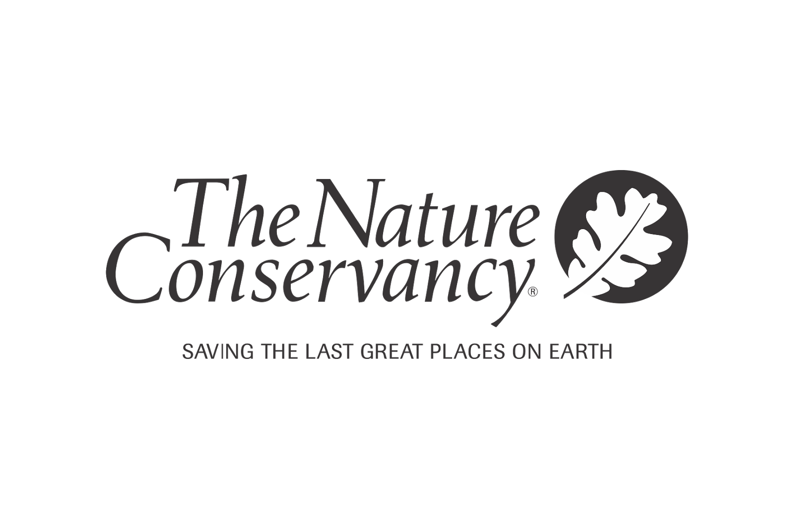 The nature conservancy logo png. Logos