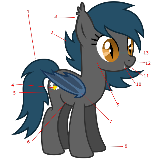 Thestral drawing cute. Anatomy of the batpony