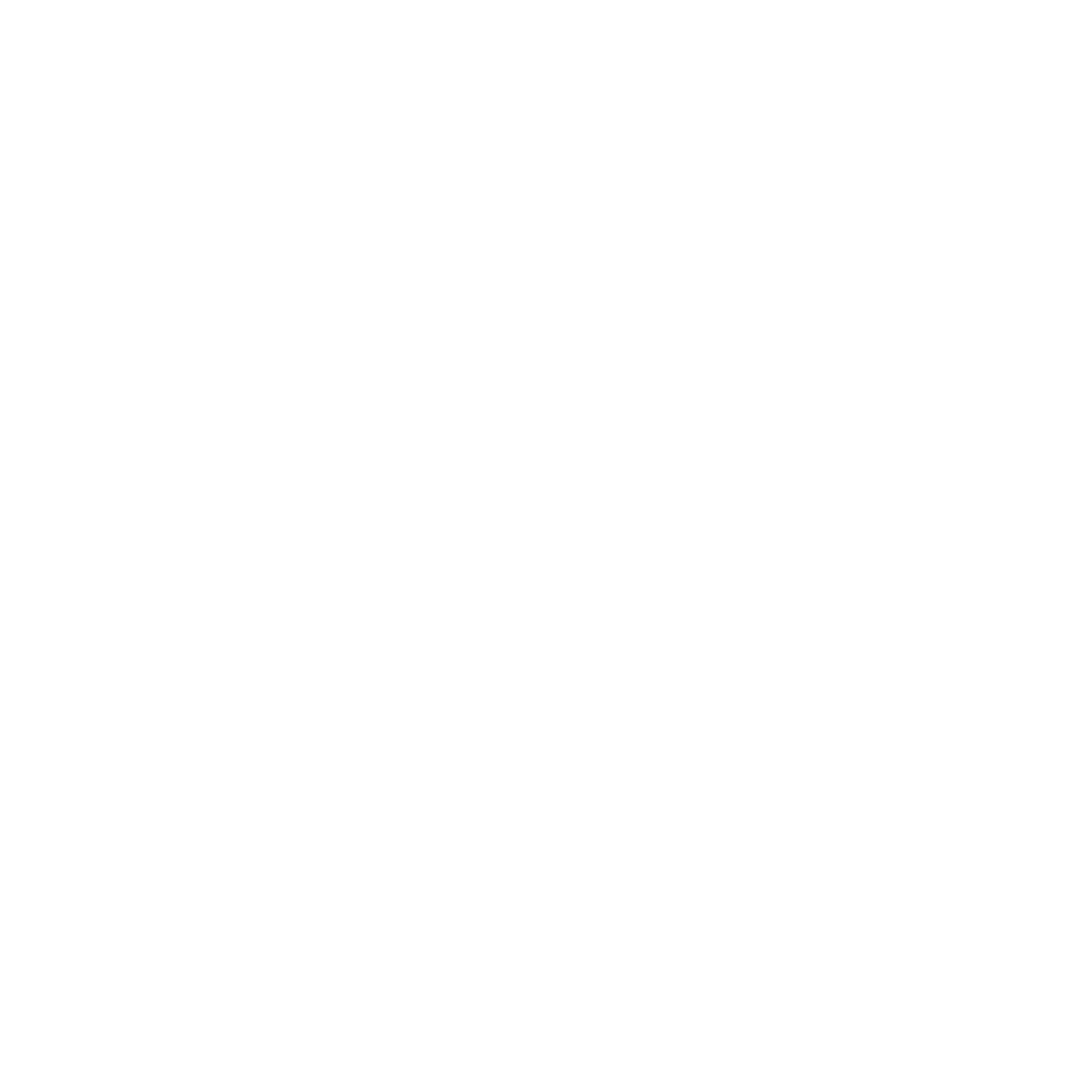 Thick line png. N spicy logo transparent