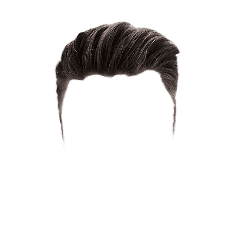 thing 1 and thing 2 hair png