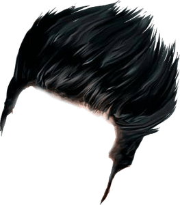 Thing 1 and thing 2 hair png. Cb zip file