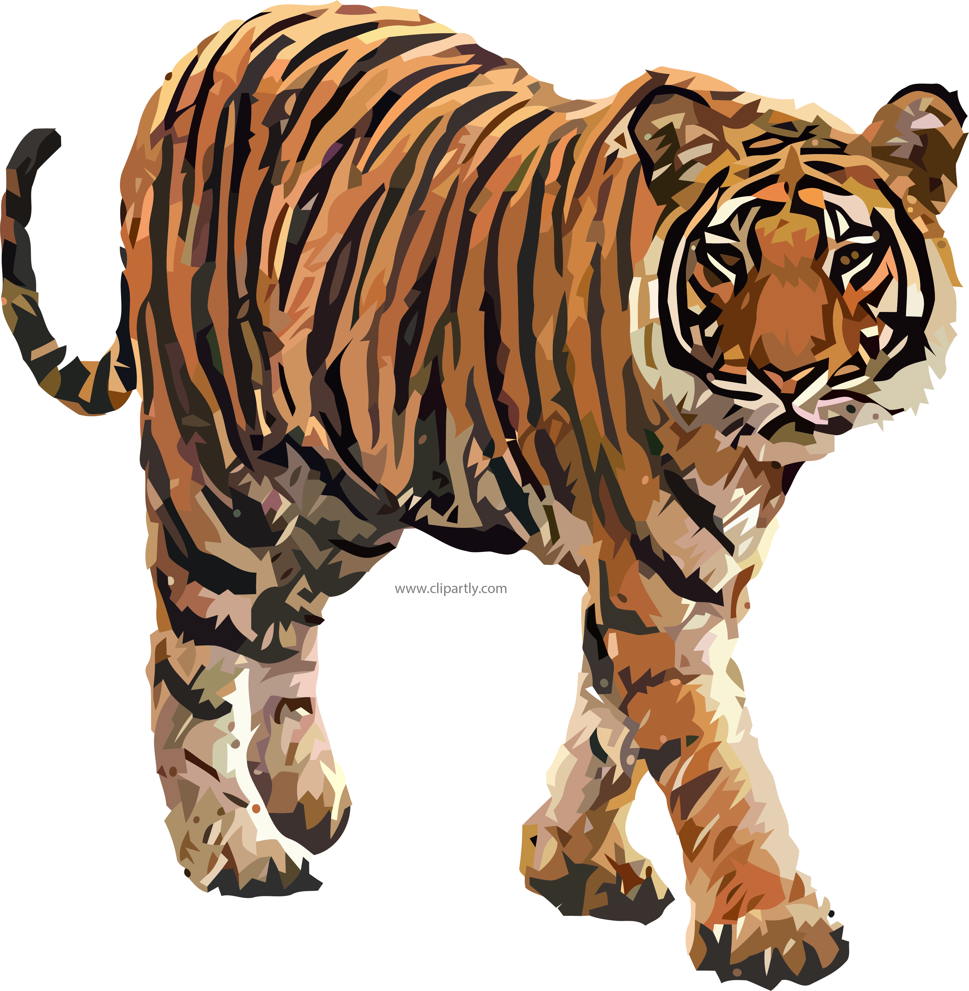 Tiger clipart png. Come image www clipartly
