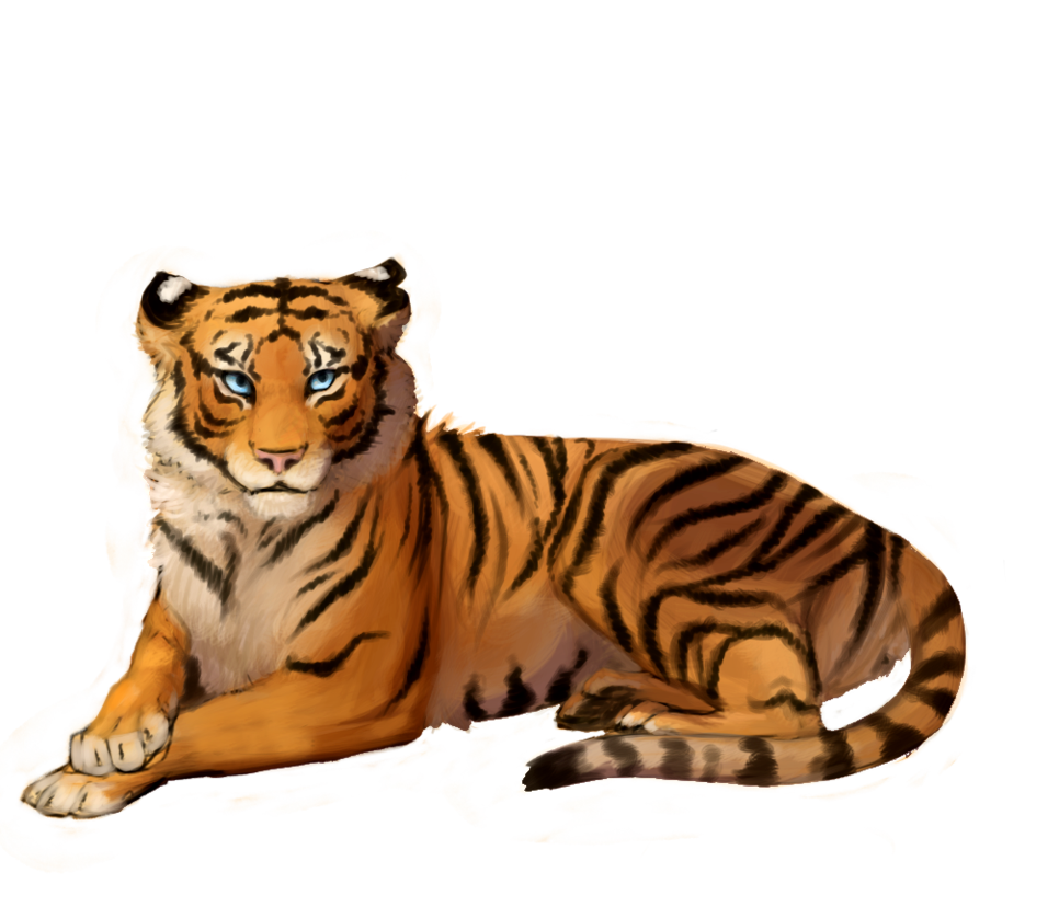Tiger clipart png. Sitting transparent picture free