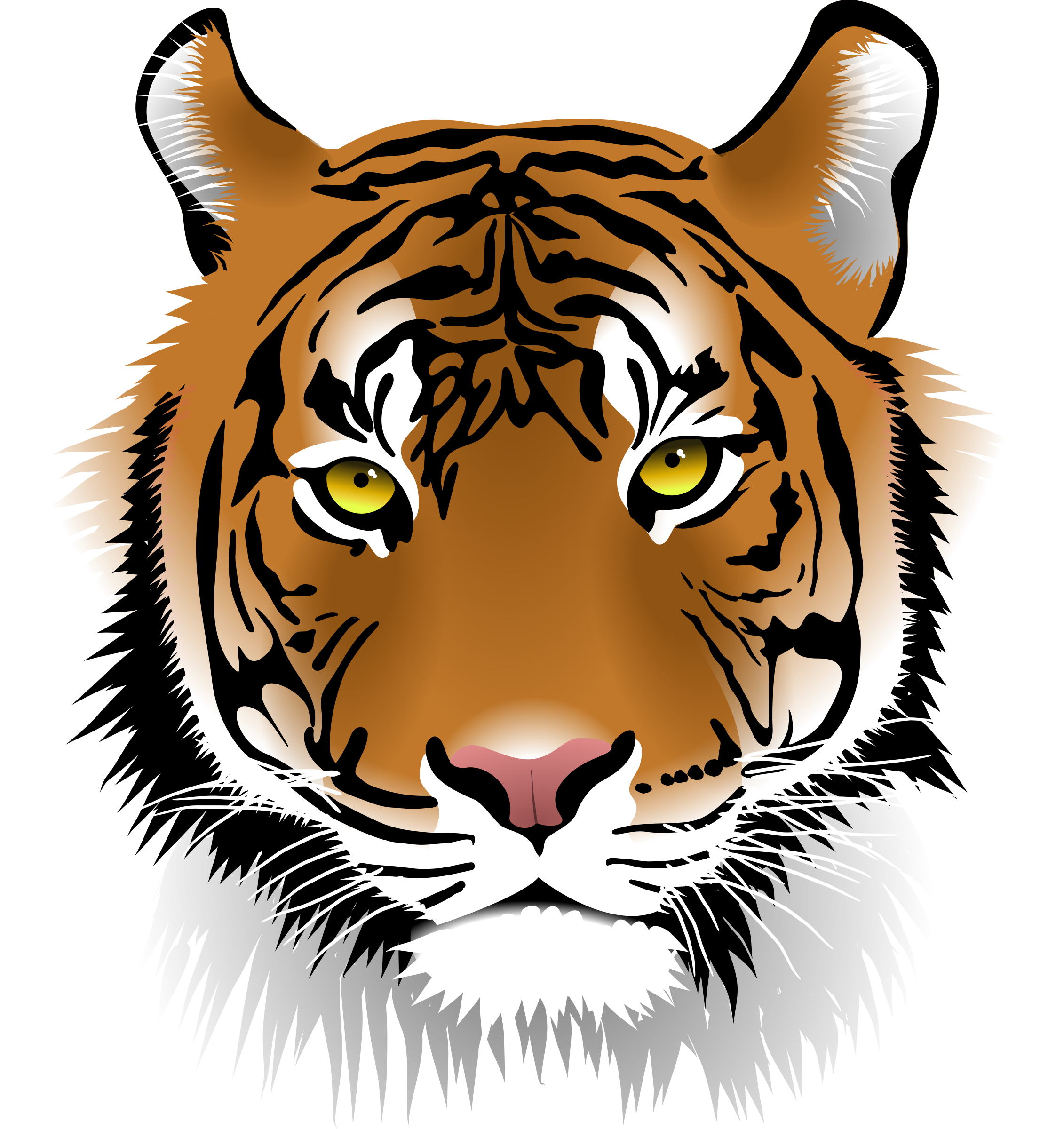 Tigers drawing front face. Tiger png images transparent