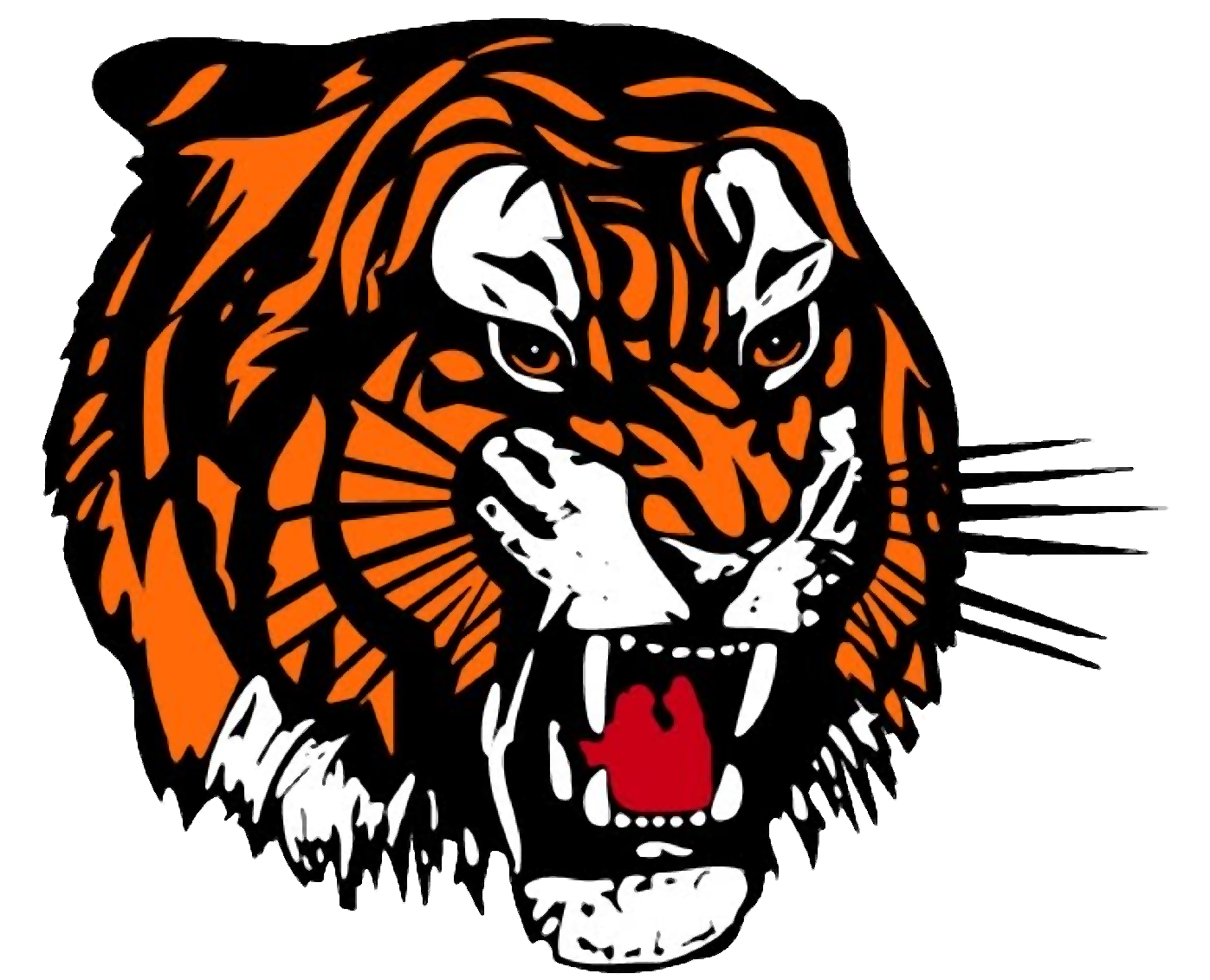 Tigers drawing front face. Tiger png transparent image