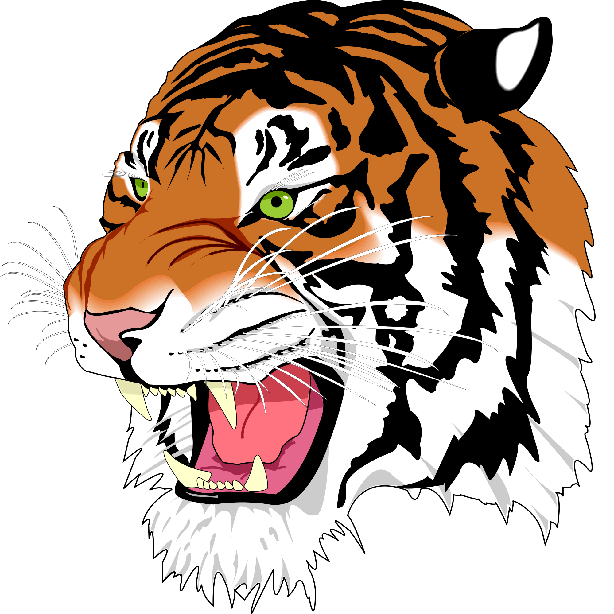 Ghostscript tiger wikimedia commons. Svg test file clipart black and white download