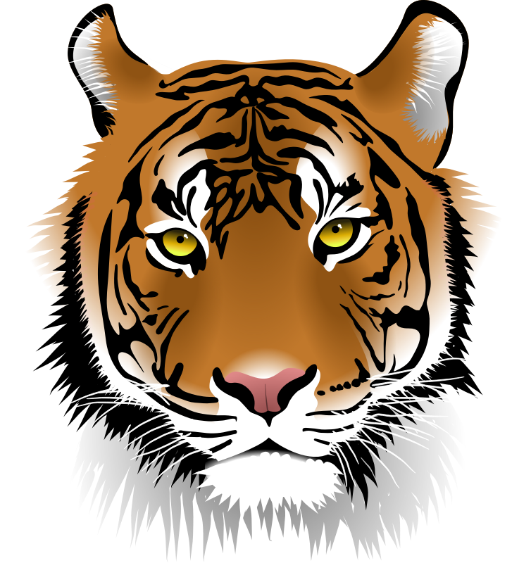 Tiger head png. Free icons and backgrounds