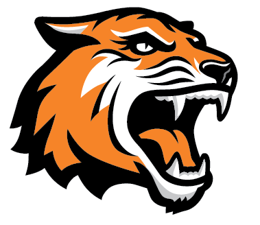 tiger head png