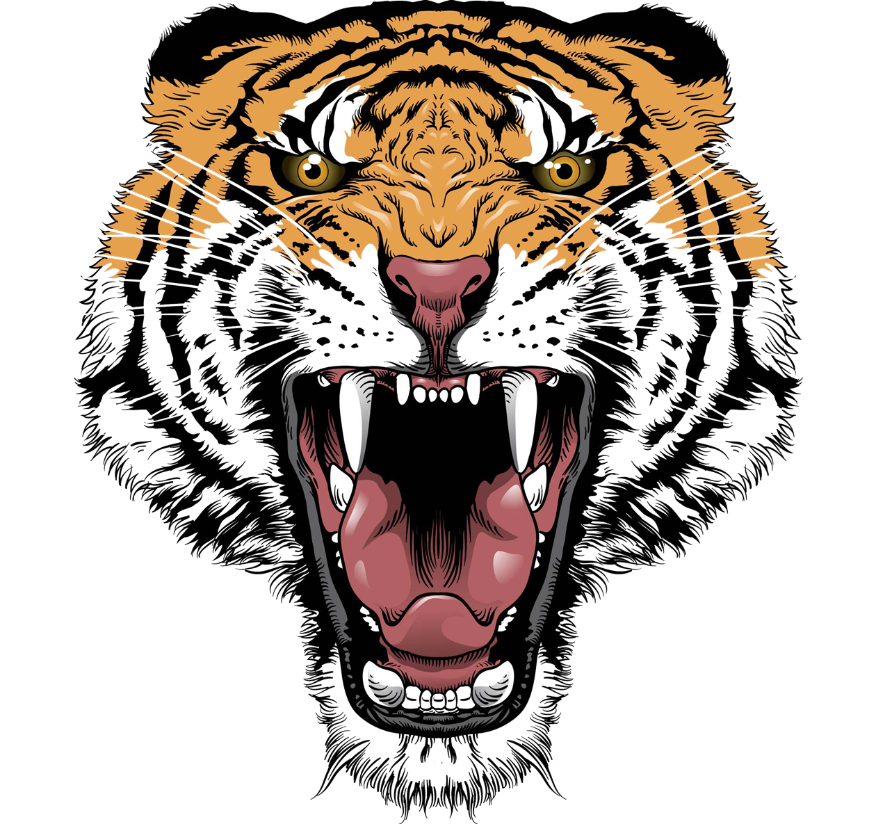 Tiger head png. Face transparent images pluspng