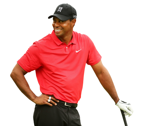 tiger woods png