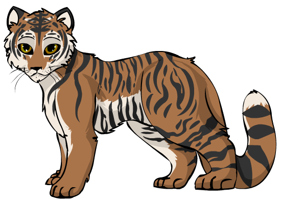 Tigers drawing bengal tiger. By starryevening on deviantart