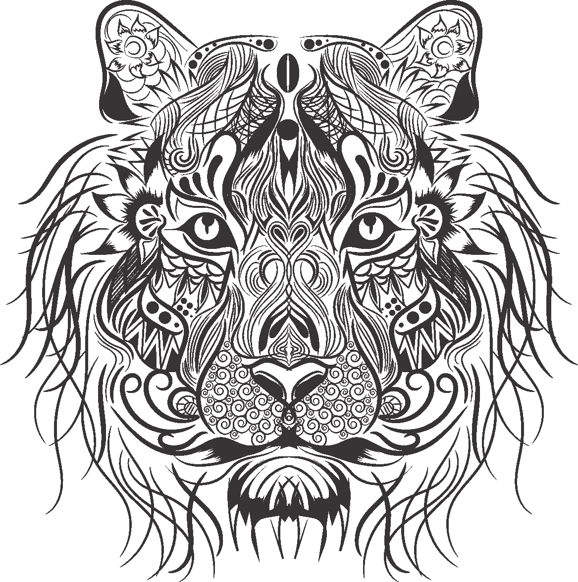 Tigers drawing symmetrical. Tiger lionhead rabbit whiskers