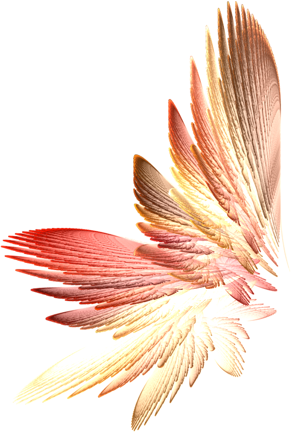 Tinkerbell wings png. Download fairy transparent x