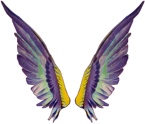 Tinkerbell wings png. Download gallery for fairy