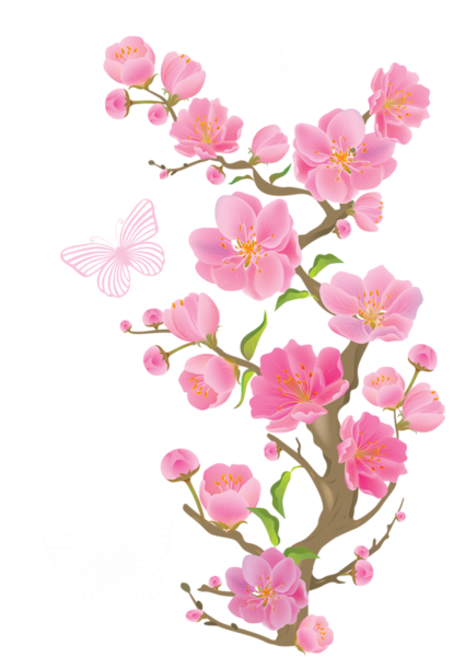 Tiny flower png. Spring branch with butterflies