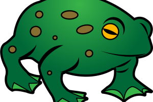 Toad clipart. Stylish design frog and