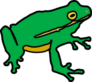 Drawing frog side view. Amphibian lithobates clamitans toad