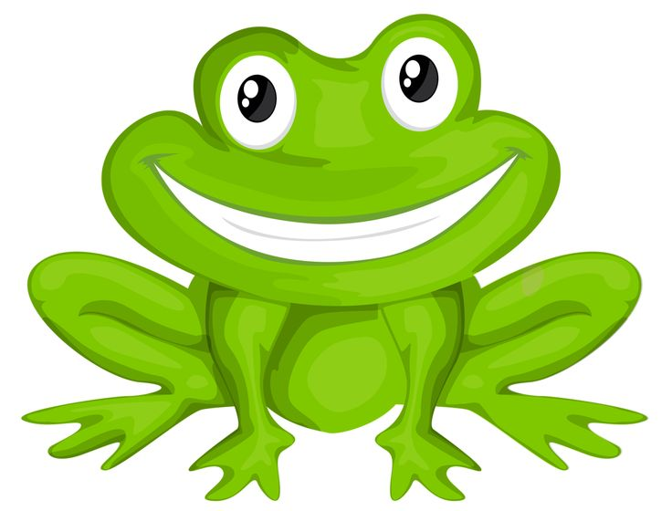 Toad clipart colourful. Best frog clip
