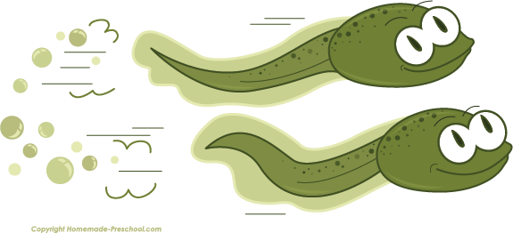 Toad clipart tadpole. Frog pencil and in