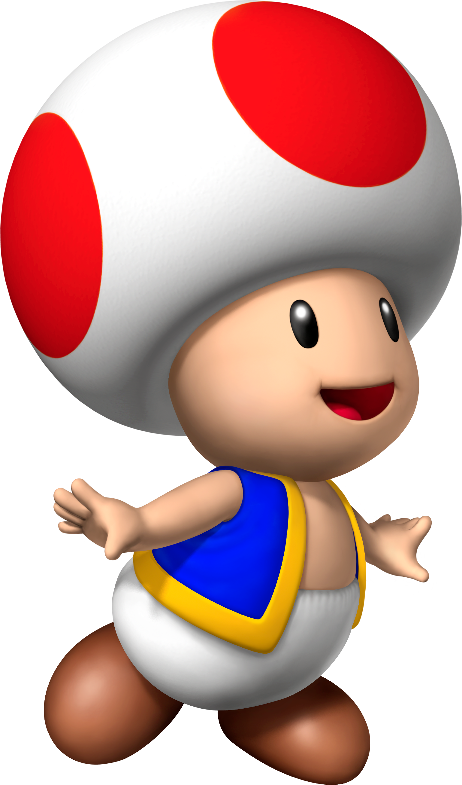 Toad transparent animated. Image toadmxs png mydiymario