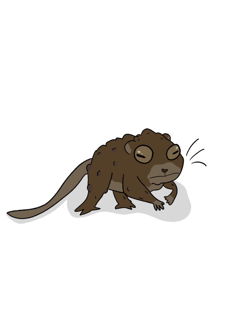 Shrew drawing little. Toad by glitchedtree on