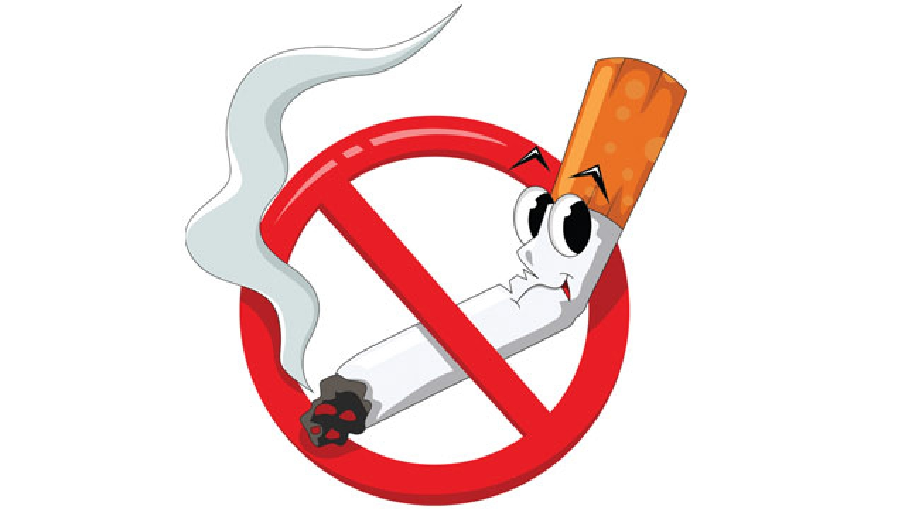 Tobacco clipart anti tobacco. Who cancer aid association