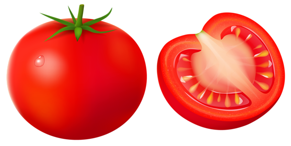 Tomato clip string. Png vector clipart image