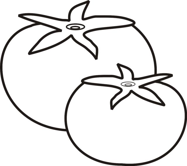 Tomatoes clipart coloured. Tomato coloring page pages