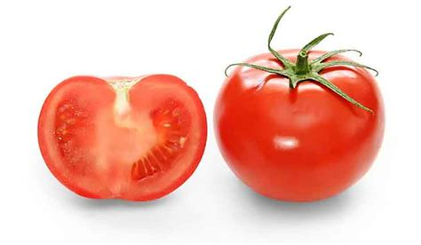 Tomato clipart kamatis. Comments