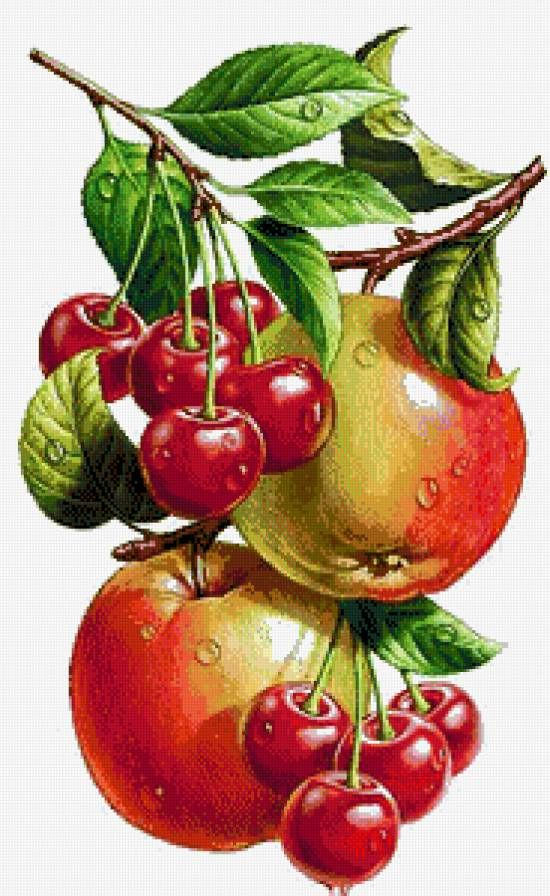 Tomato clipart lukisan. Best buah images