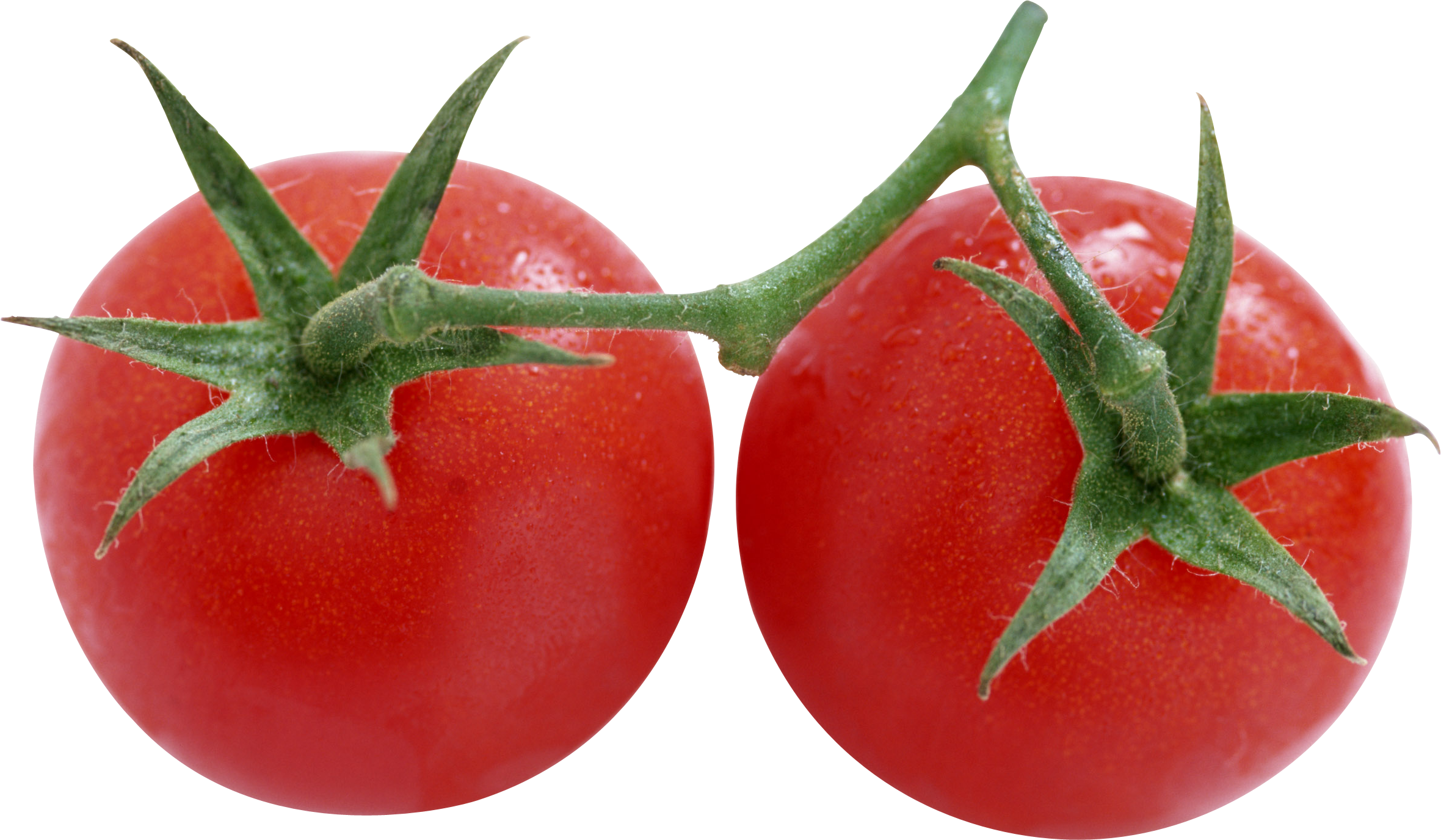 Tomato clipart two. Red tomatoes png image