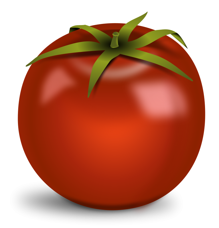 Tomatoes clipart diced tomatoes. Free tomato cliparts download