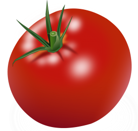 Tomato clipart two. Tags purepng free transparent