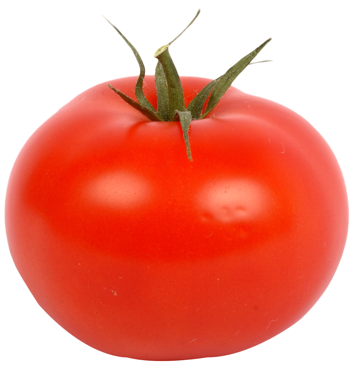 Tomato slices png. Images pngpix fresh red