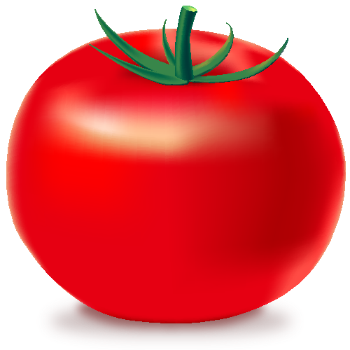 Tomato svg icon. Red vegetable vector public
