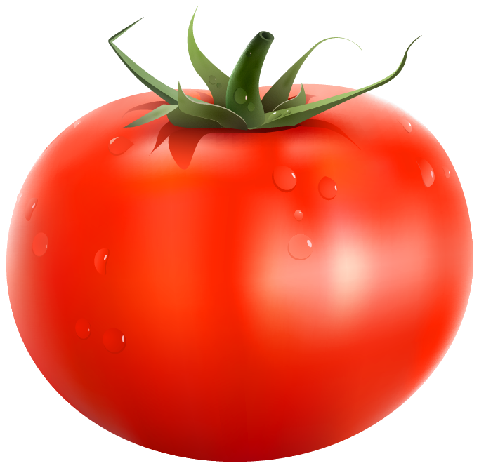 Tomato svg transparent. Tomatoes banner library