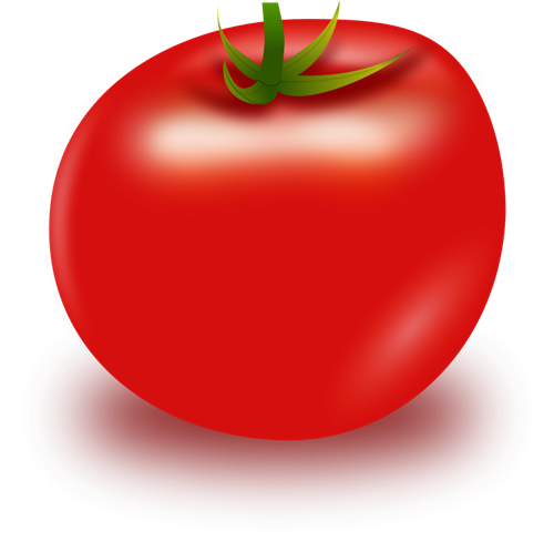 Tomato clipart two. Tomatoes clip art free