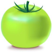 Tomatoes clipart green tomato. Icon vegetable svg vector